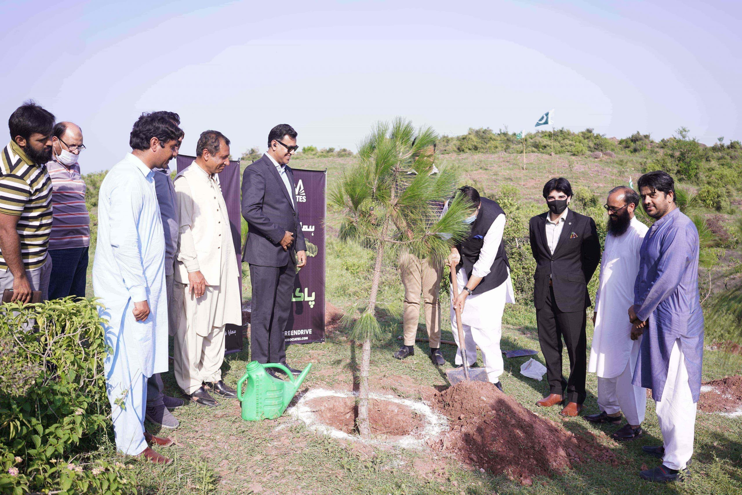 AAA Associates has initiated 1-Lac Tree Plantation Drive in Continuation gallery