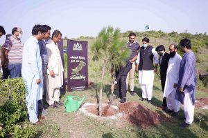 Read more about the article AAA Associates Has Initiated 1-Lac Tree Plantation